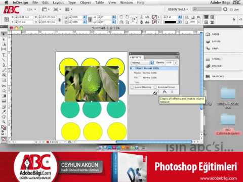 Photo of InDesign CS5 Effects