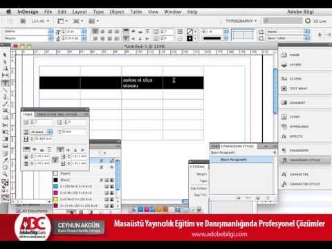 Photo of InDesign CS5 Tablolar