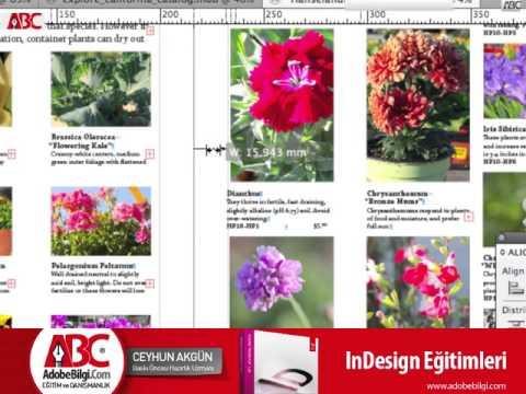 Photo of InDesign CS5 Tools
