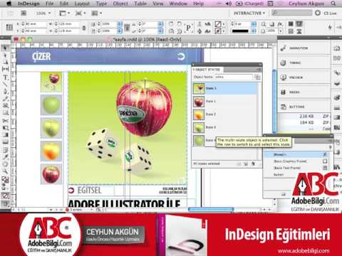 Photo of InDesign CS5 Object States