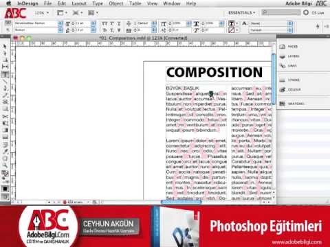 Photo of InDesign CS5 Preferences