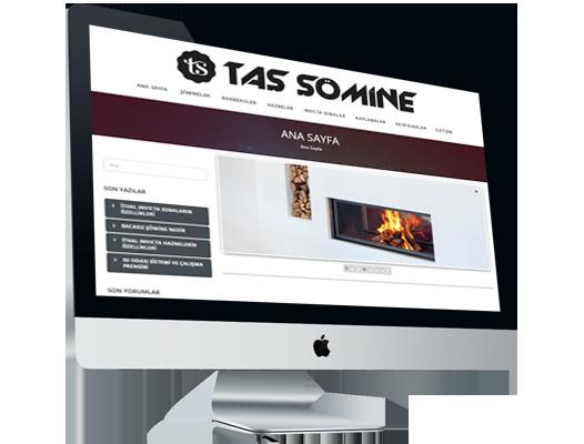 tassomine.com