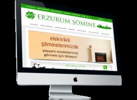 erzurumsomine.com